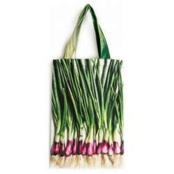 Vegetable-bag-Strolling-around-the-market-Maron-Bouillie-Spring onion front
