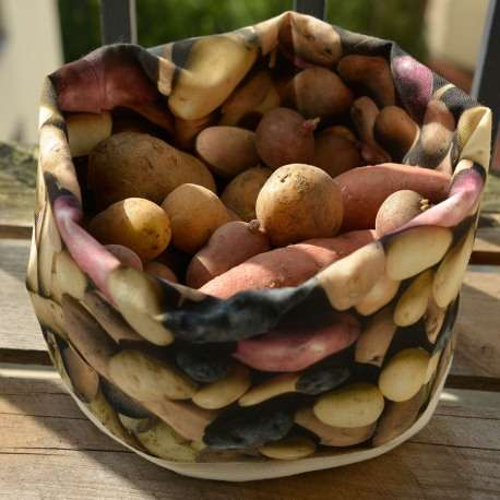 Basket Patatoes full - Vegetables kitchen - Maron Bouillie Paris