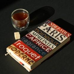 "Alphabet book cover ""Paris sparrows meeting"""